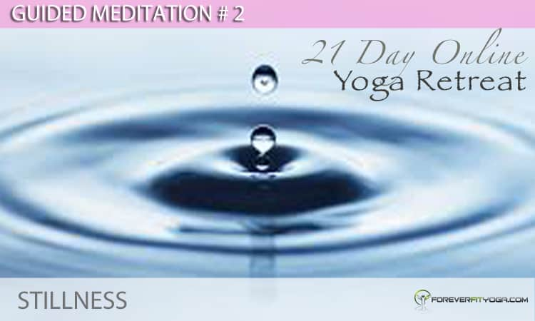 Guided Meditation # 2 - Stillness