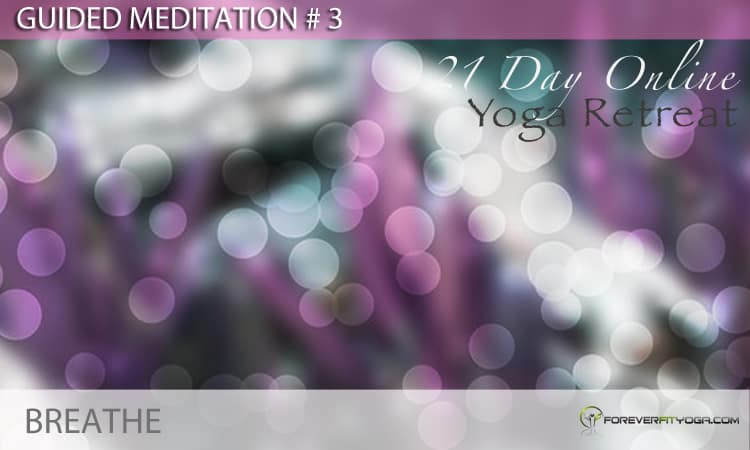 Guided Meditation # 3 - Breathe