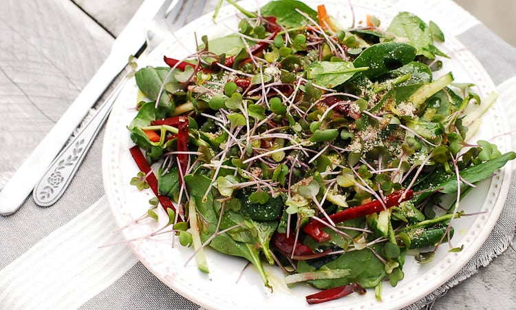 Sprout Salad-3