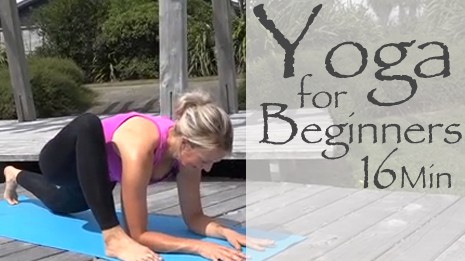 FREE Beginners Yoga Video