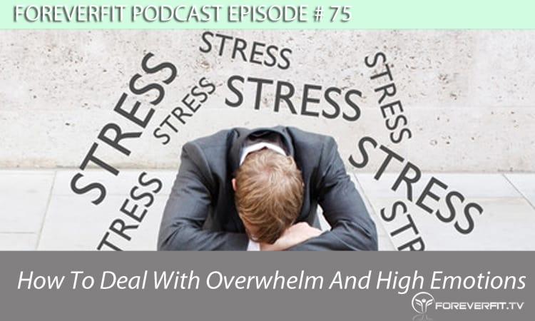 Podcast # 75