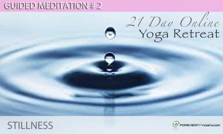 Guided Meditation # 2 - Stillness