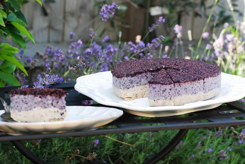 Raw Blueberry Cheesecake-5